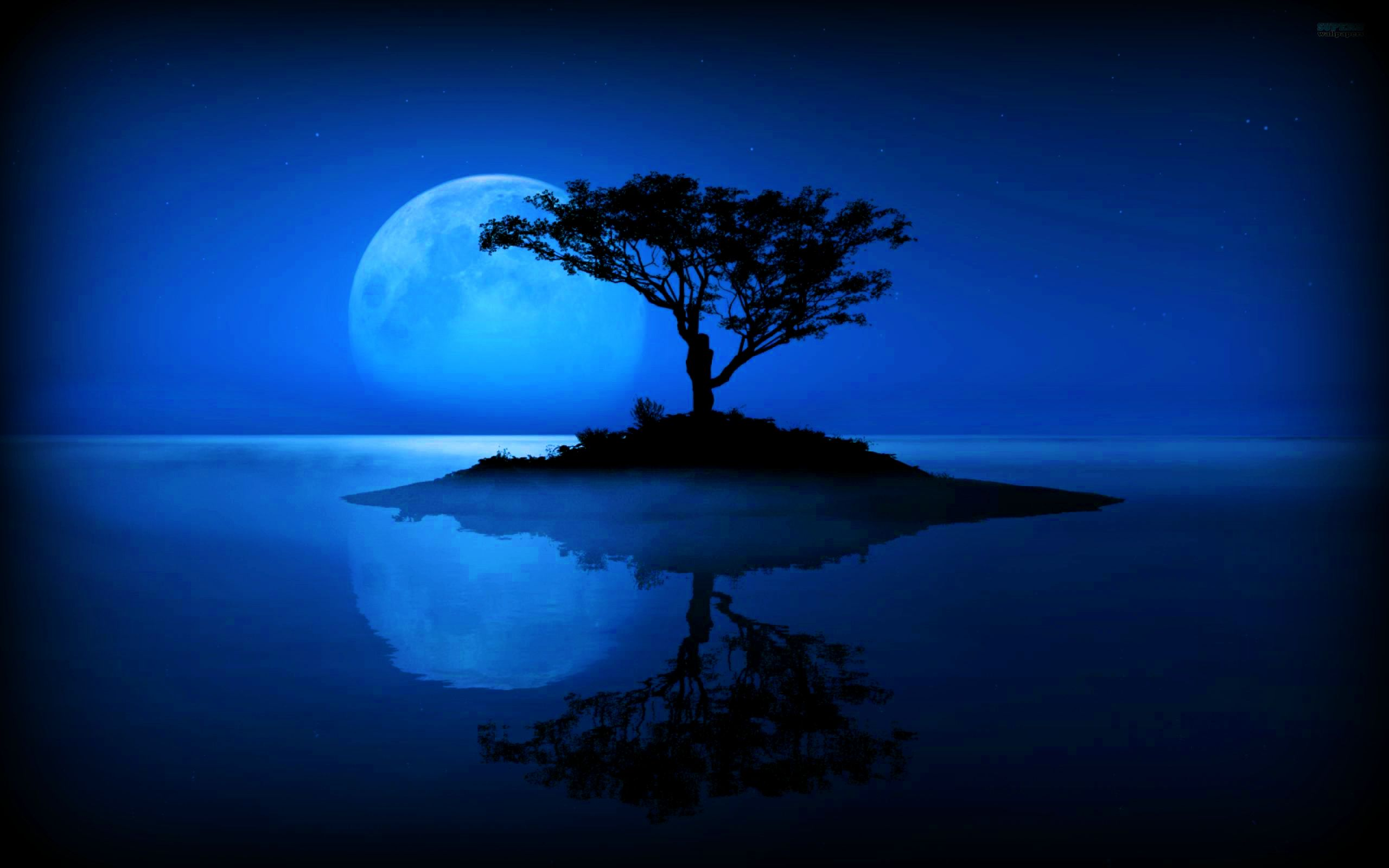 Moon On The Water Wallpapers Hd Free 246850 Beautiful Moon Wallpaper Photo Gallery Beautiful Nature Hd wallpaper sea moon water reflection