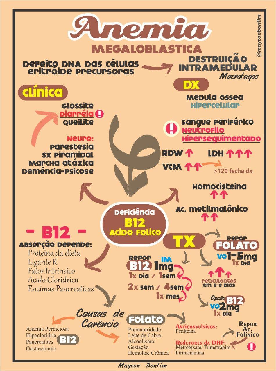 Pin de Angie Duarte en Medicina   Pinterest   Medicina, Anatomía y Salud