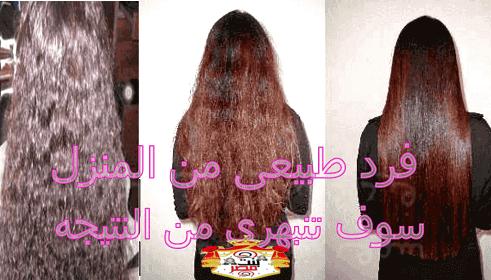شعرك عنوان جمالك الطريقة العملية لفرد الشعر ليصبح بملمس ناعم وجذاب Long Hair Styles Hair Styles Hair