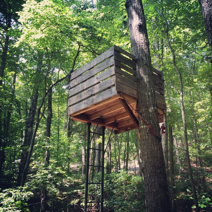 Bradley 39 s tutoring blog pallet hunting blinds prey for How to build a tree stand from a pallet