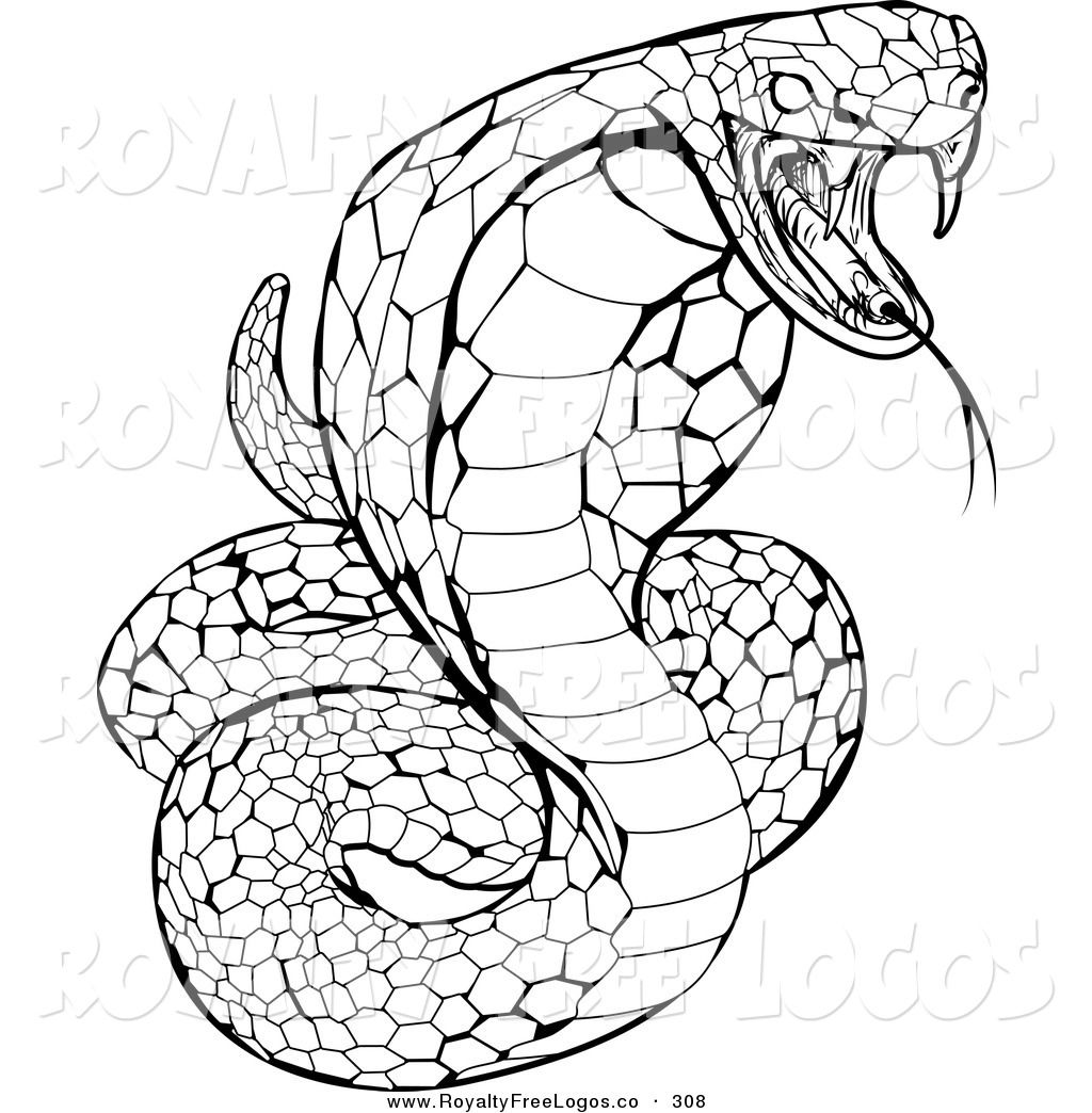 logo of a striking venomous cobra snake hissing on a white