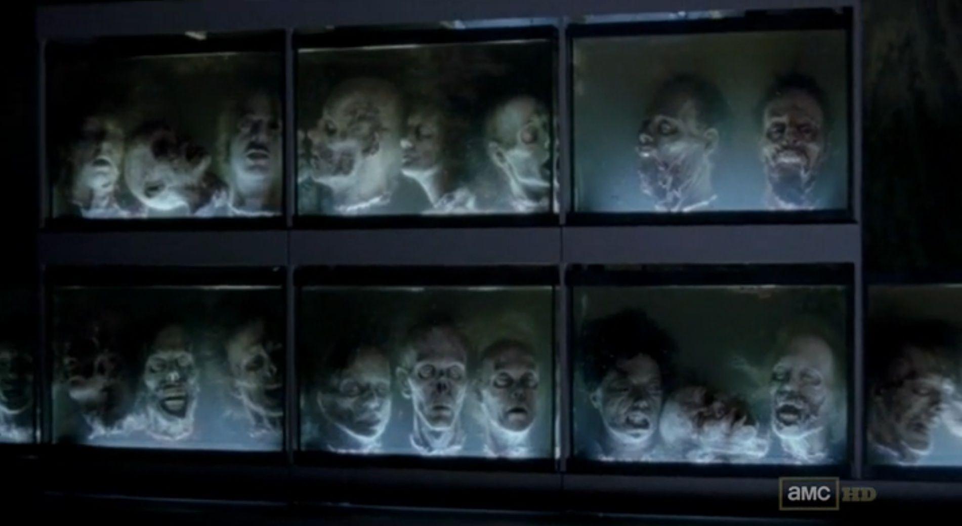 Walking Dead Heads In Fish Tanks