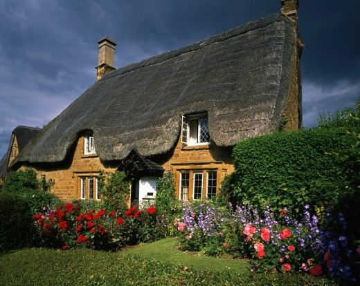 UK - England, Oxfordshire, Great Tew, Cottages - thatched cottage in summer