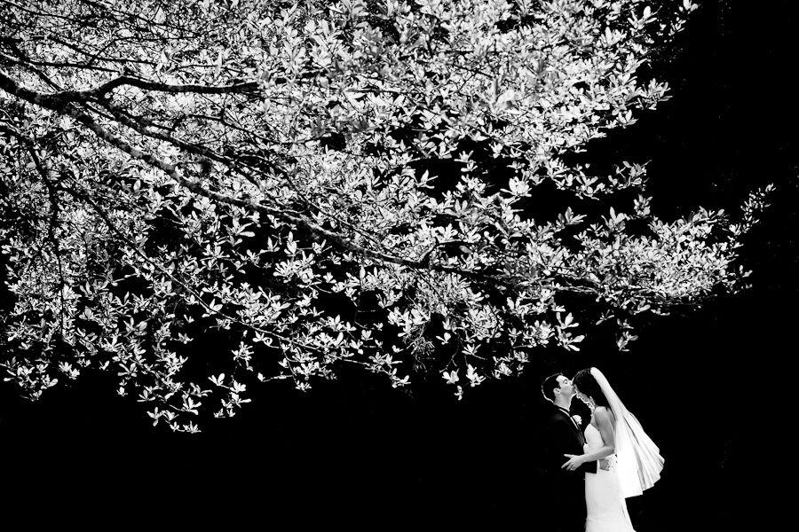 Ben Chrisman Photography: Beauty 1