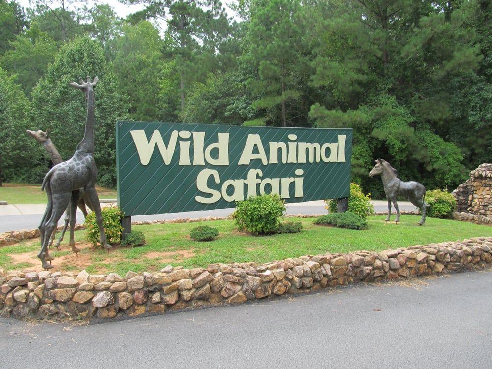 Wild Animal Safari Is A Unique Park That Everyone In ...