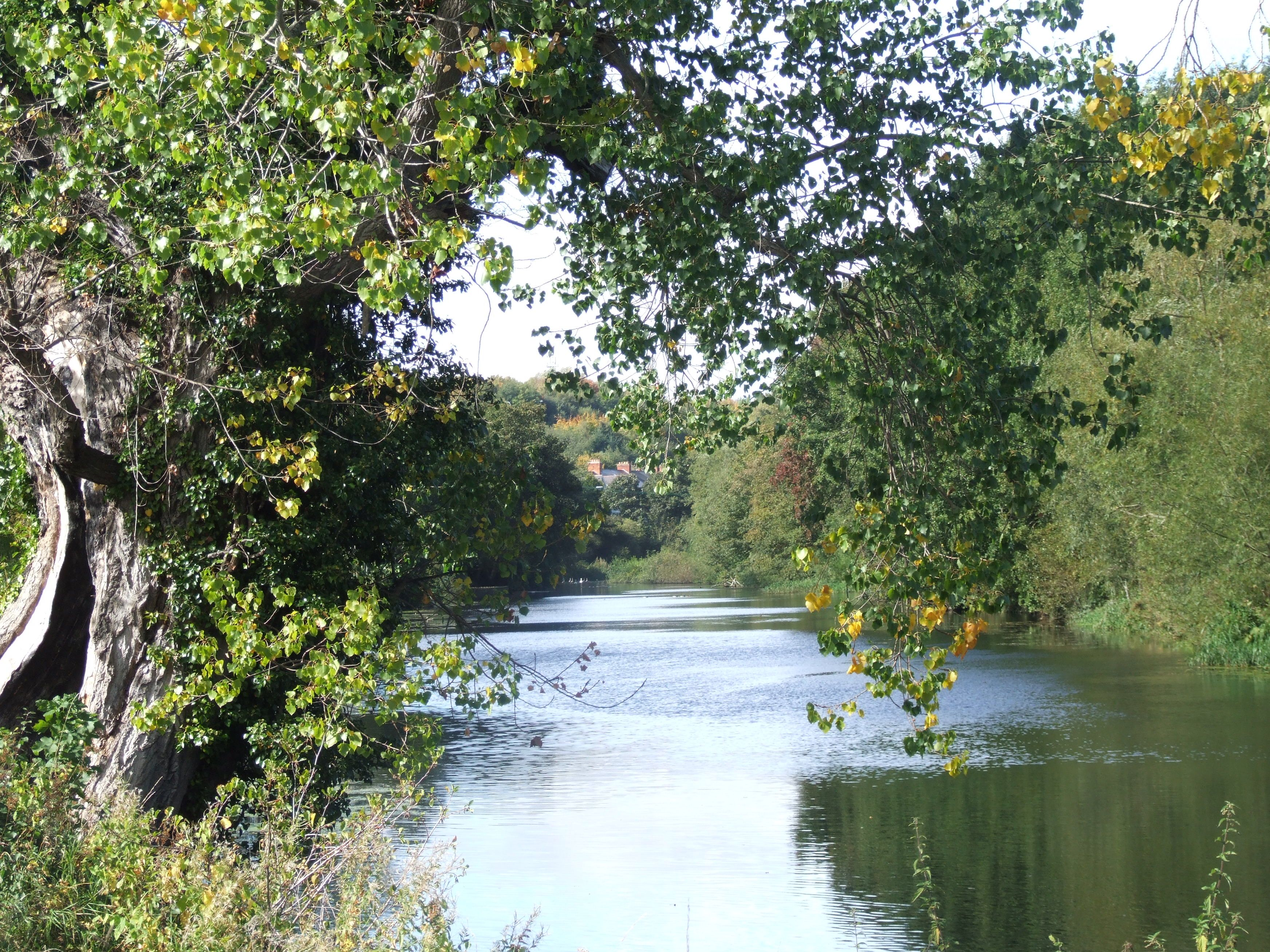 River Liffey at Islandbridge, Dublin