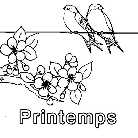 Coloriage Printemps Fleurs à colorier , Dessin à imprimer