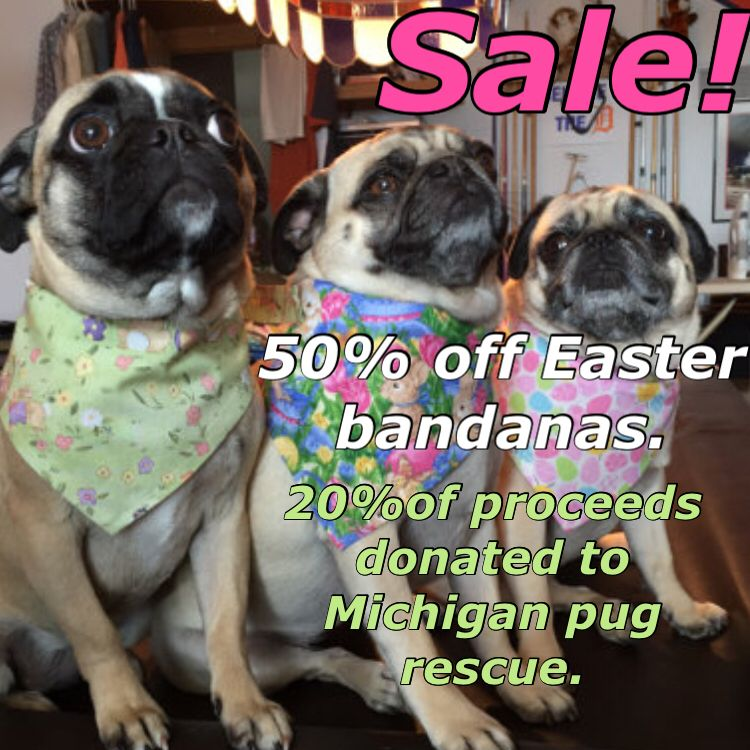 20 Of All Proceeds Go To The Michigan Pug Rescue Easter Bandanas