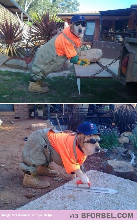 Who Says I Need A Man To Help Me Around The House?
