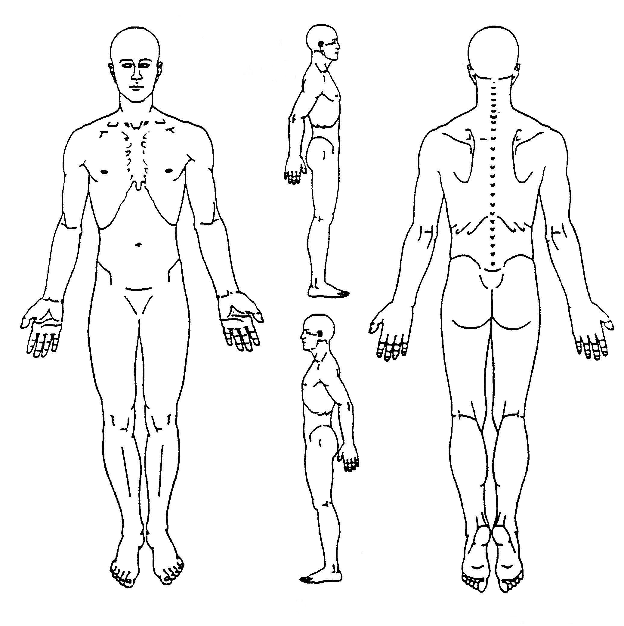 Body Assessment Chart