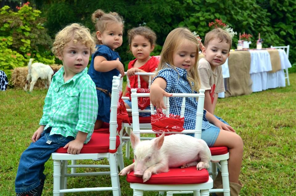Themed Party White leather chair, Zoo animals, Wooden