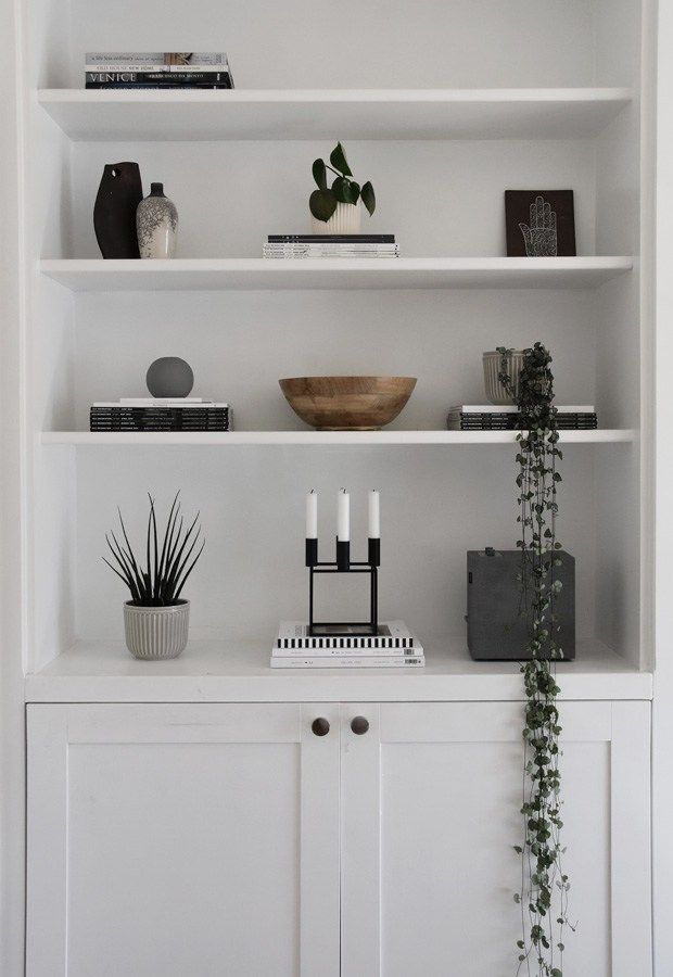 Photo of Five easy-to-care-for houseplants | These Four Walls