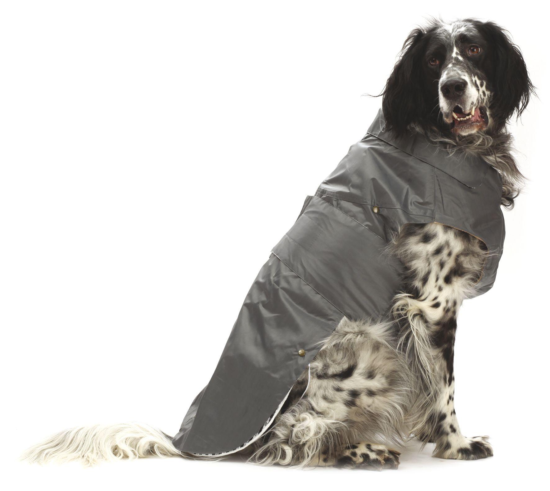 Hundekissen & Mäntel : Hunde Regenmantel Montreal mit ...