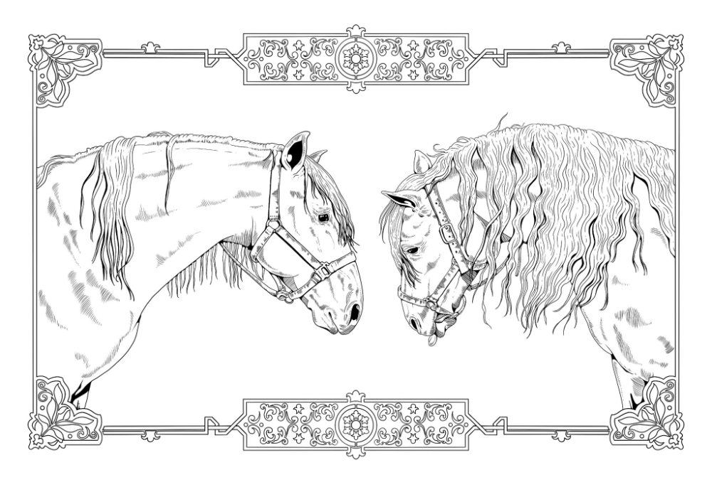 Free Colouring Page Jpg Pdf In 2020 Coloring Pages Andalusian Stallion