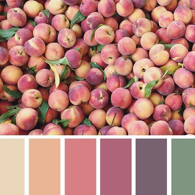 Vamos falar cores? No blog tem dicas sobre a importância da paleta de cores na decoração, link na bio