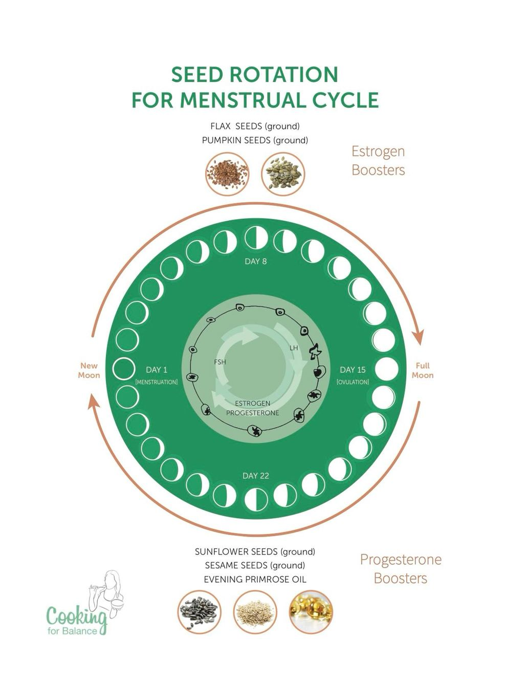 Estrogen Dominance As Hormonal Imbalance In Women Seed Cycling