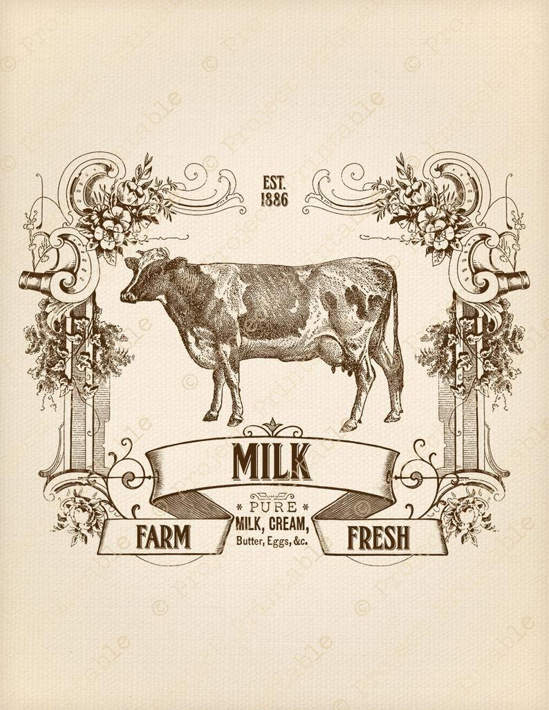 Instant Download Kitchen Printable Farm Dairy Fresh Milk
