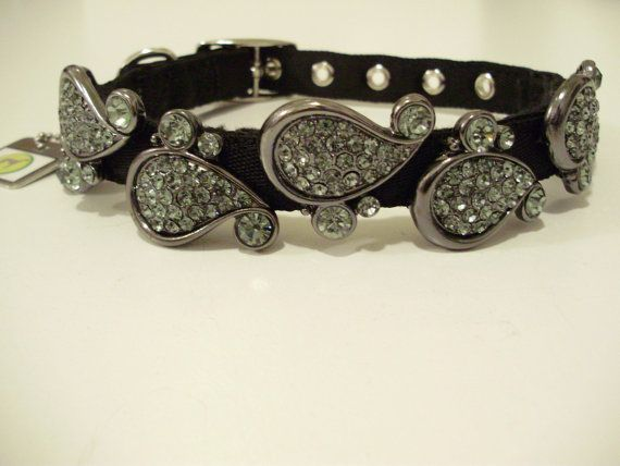 Paisley Dog Collar