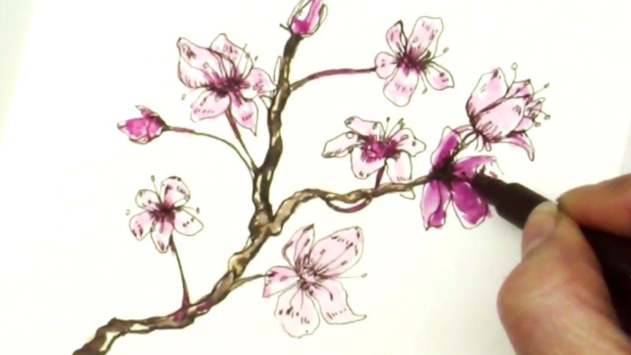 Pen Ink Tutorial How To Draw Sakura Cherry Blossom Branch Flower Drawing Tutorials Flower Drawing Cherry Blossom Drawing