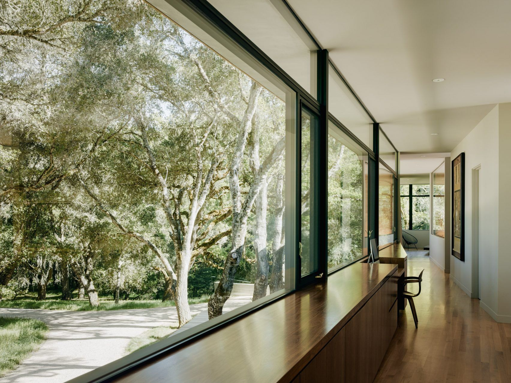 Sagan Piechota creates hillside California home surrounded by oak trees