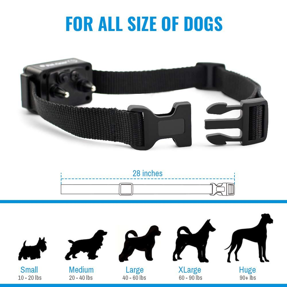 Petrainer Dog Shock Collar With Remote Training Collar Shock