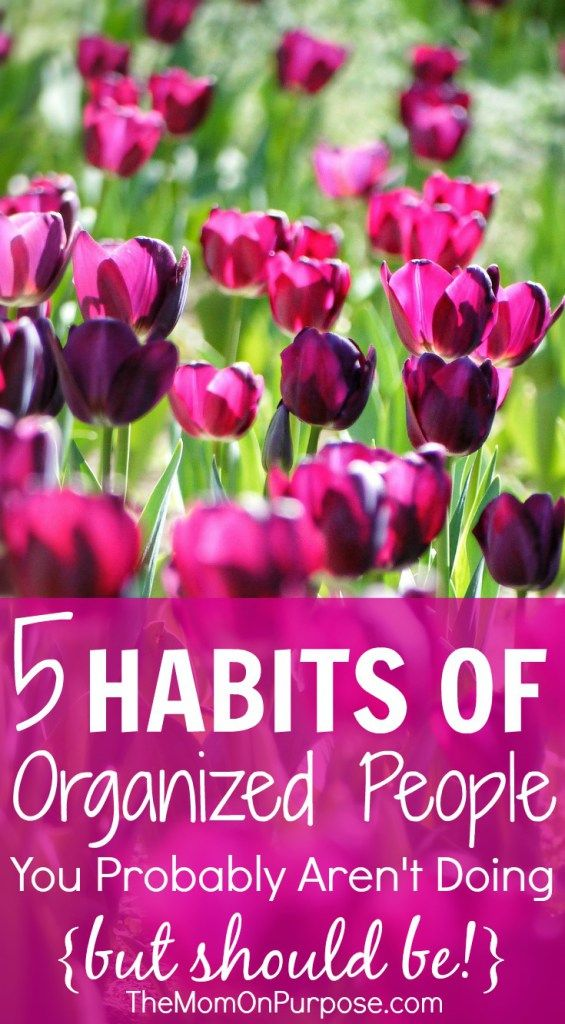 Do you struggling with staying organized? Adding these 5 habits to your life might be just the key to get you there for good!