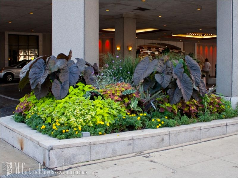 exterior landscaping commercial