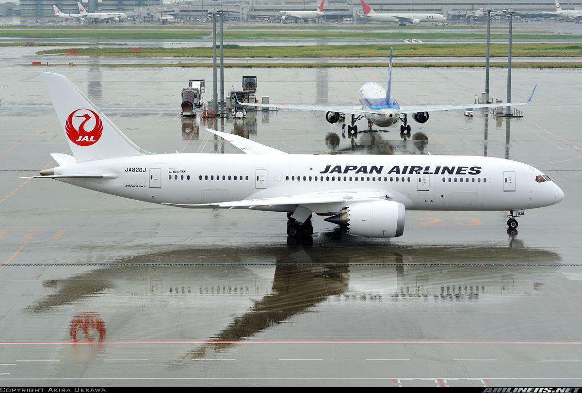 Japan Airlines - JAL JA826J Boeing 787-846 Dreamliner aircraft picture