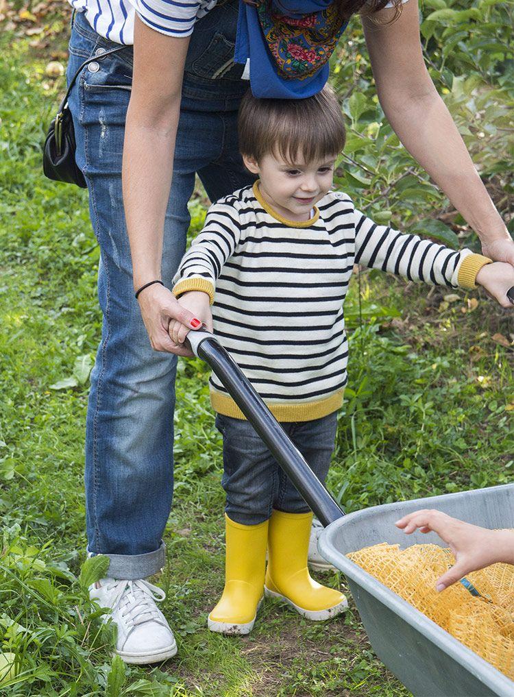 Cogiendo manzanas con carretilla. Urt. País Vasco francés   Blog www.micasaencualquierparte.com
