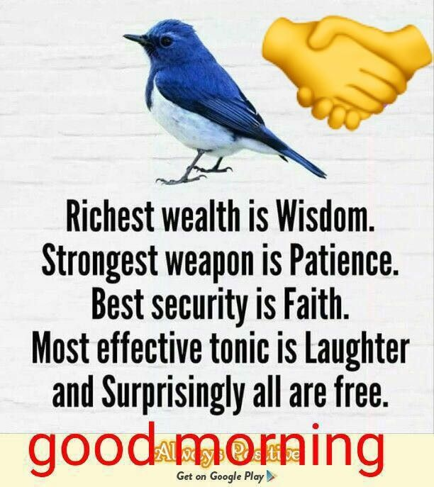 Pin By Maajid On Good Morning Wishes