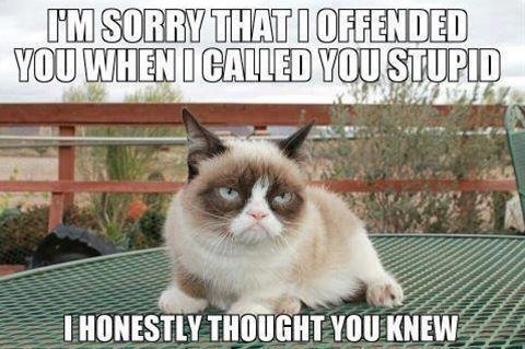 Tardar - Click image to find more humor Pinterest pins
