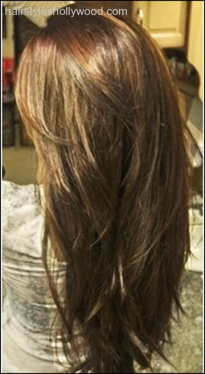 Thick Straight Layered Hair Back View Google Search Haircuts For Long Hair With Layers Long Thin Hair Haircuts For Long Hair