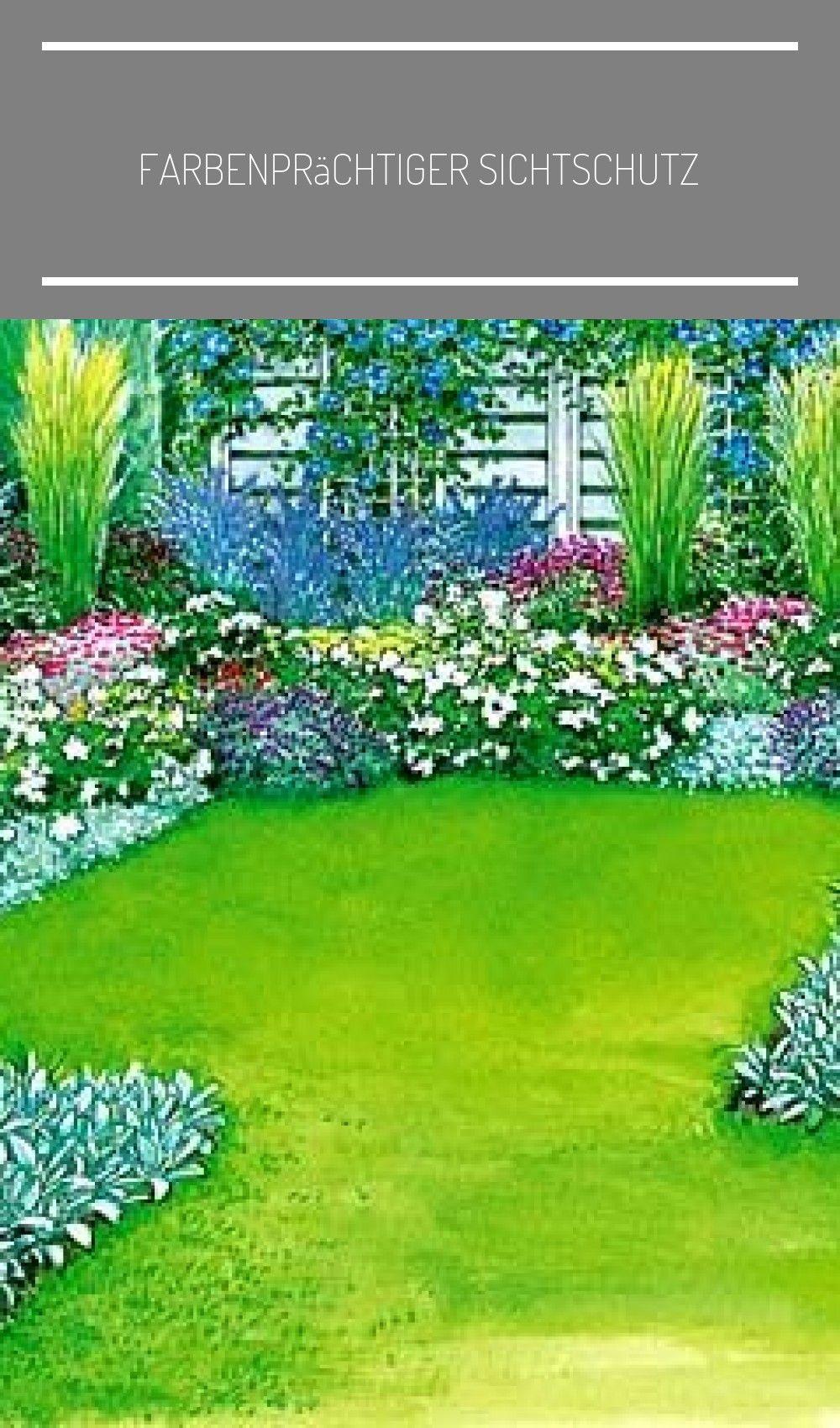 Attraktiver Sichtschutz Vorschlag 2 Mein Schoner Garten Layout Garden Plan Farbenprachtiger Sichtschutz Garden Layout Beautiful Gardens Garden Planning