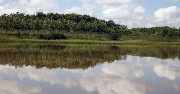 La otra cara de las licencias ambientales for http://ift.tt/2gUqHTb