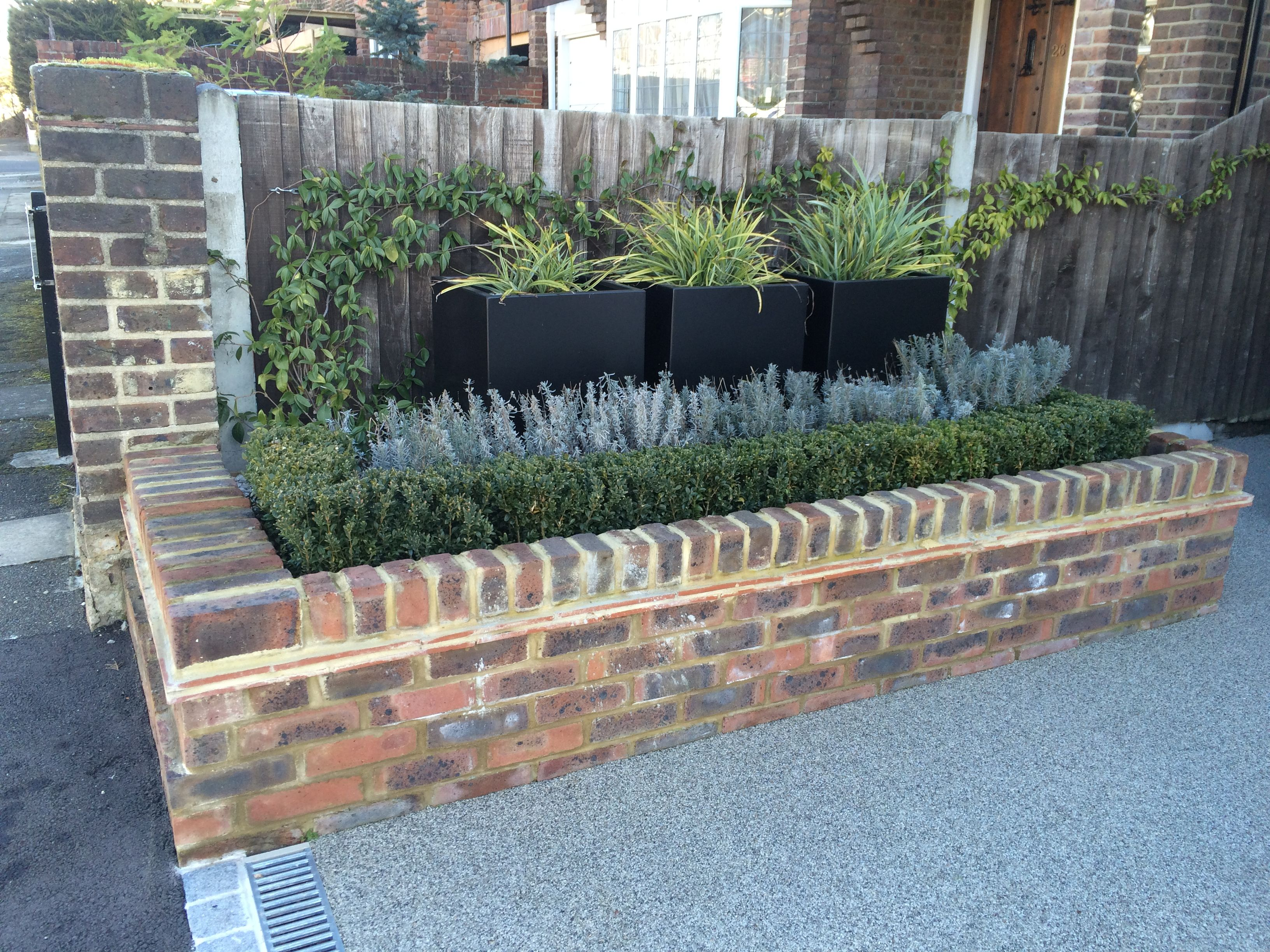 raised brick bed with buxus hedge and lavender planters with