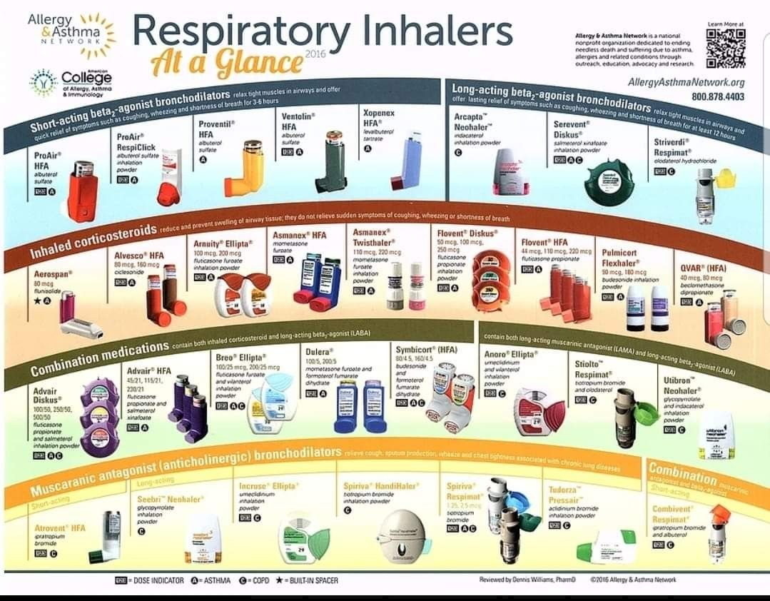 Inhalers At A Glance Asthma Treatment Asthma Respiratory Therapy