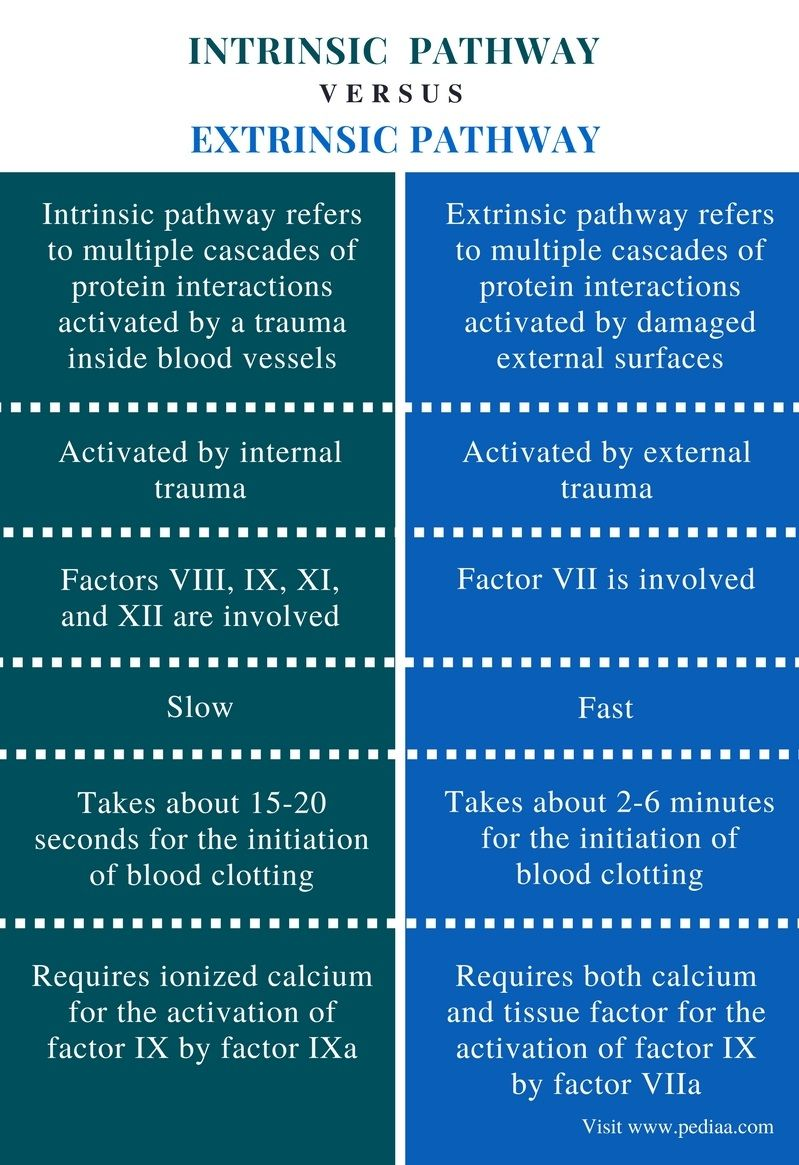 difference between intrinsic and extrinsic