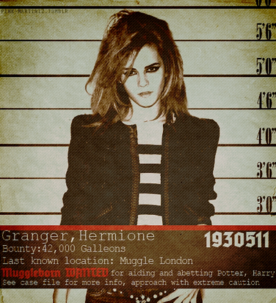 Hermione Granger wanted poster