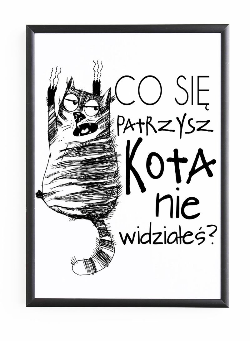 Plakat W Ramie Co Sie Patrzysz Kota Nie Widziales Kot With