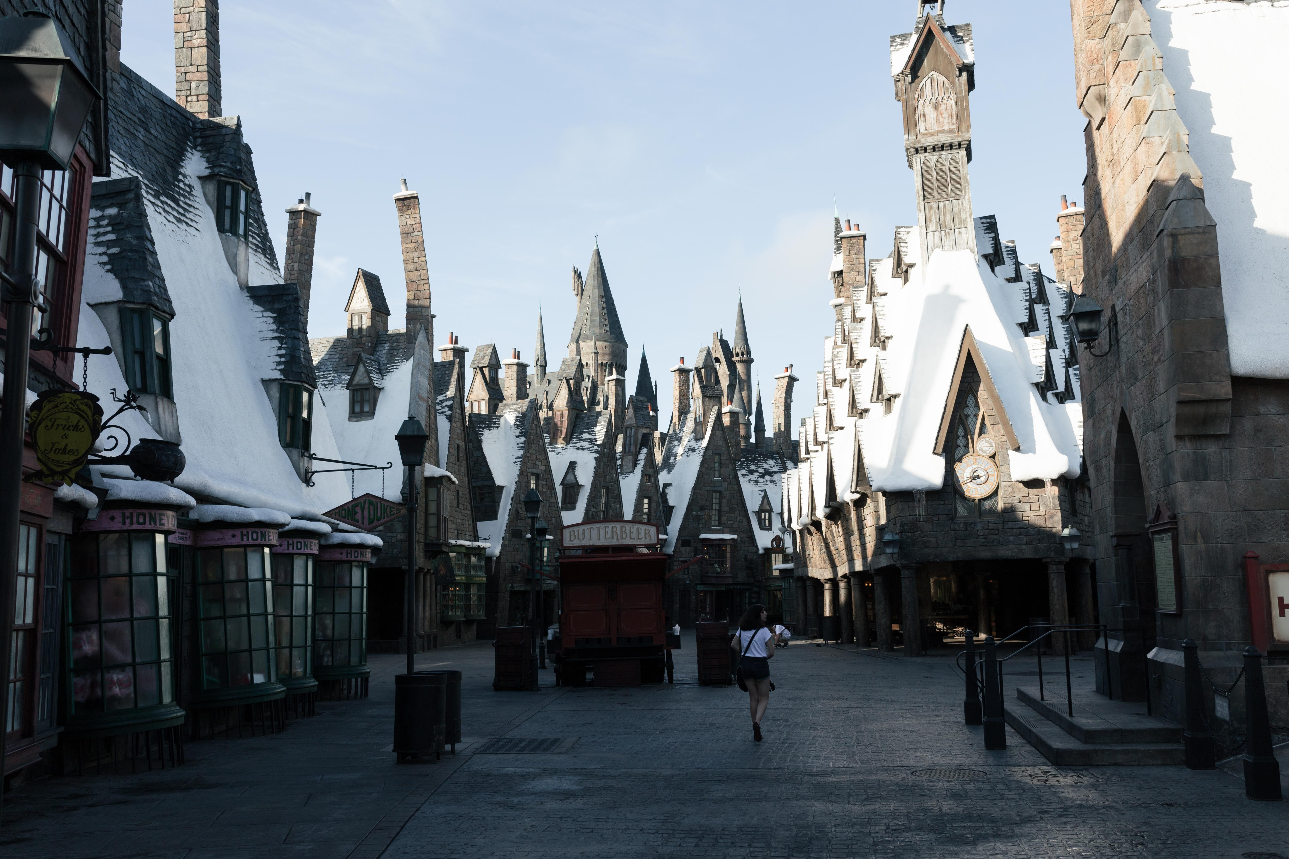The Wizarding World of Harry Potter Hogsmeade