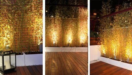 Especial diseño de jardines, áticos y terrazas la iluminación de - iluminacion jardin