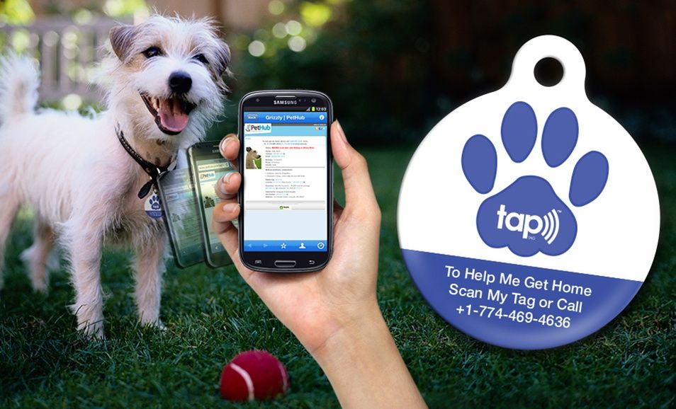 Lostpet service subscription with optional lostpet