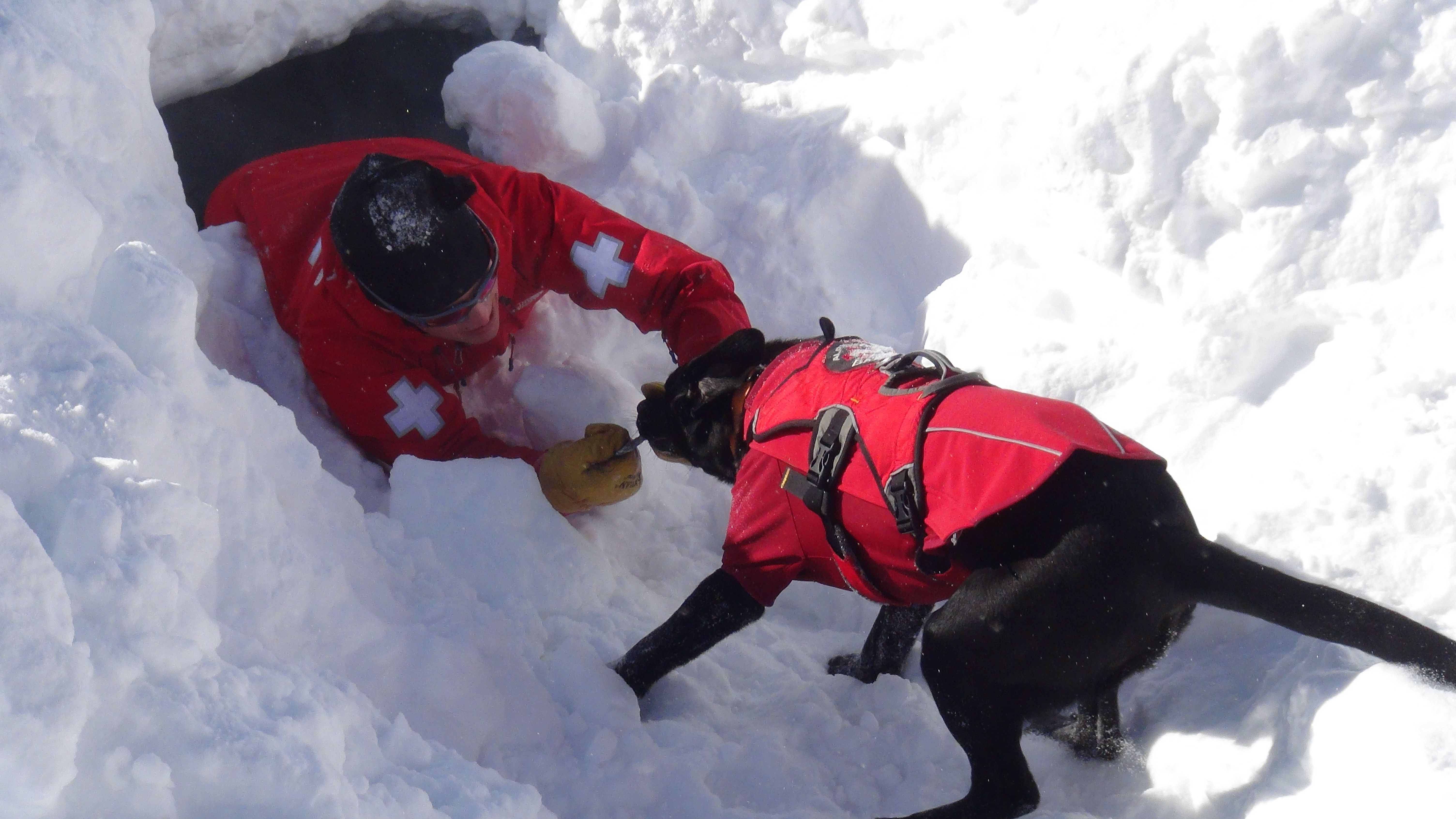 Jet From Alpental Rescuing Wbr Instructor From A Snow Pit Dog