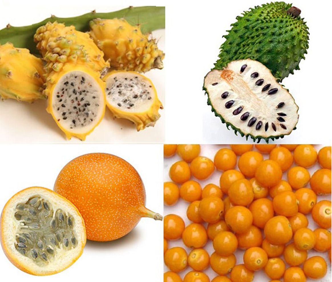 тропические фрукты названия картинки поэтому берите заметку