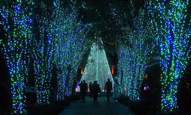 GA Christmas lights at the Garden Lights, Holiday Nights