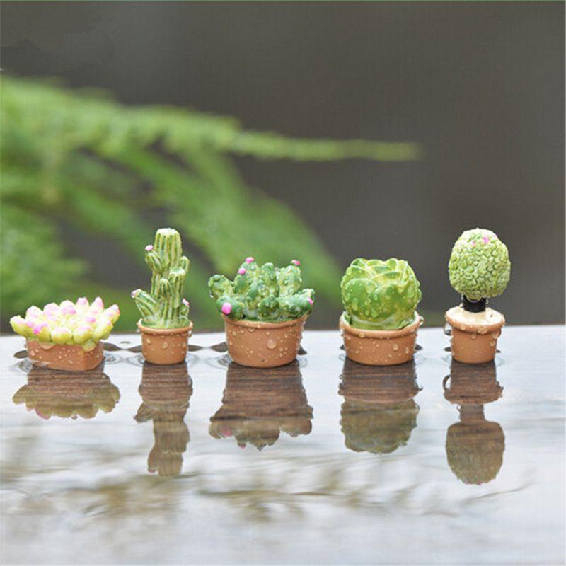 Comprar 5 unids suculentas plantas de for Decoracion jardin gnomos