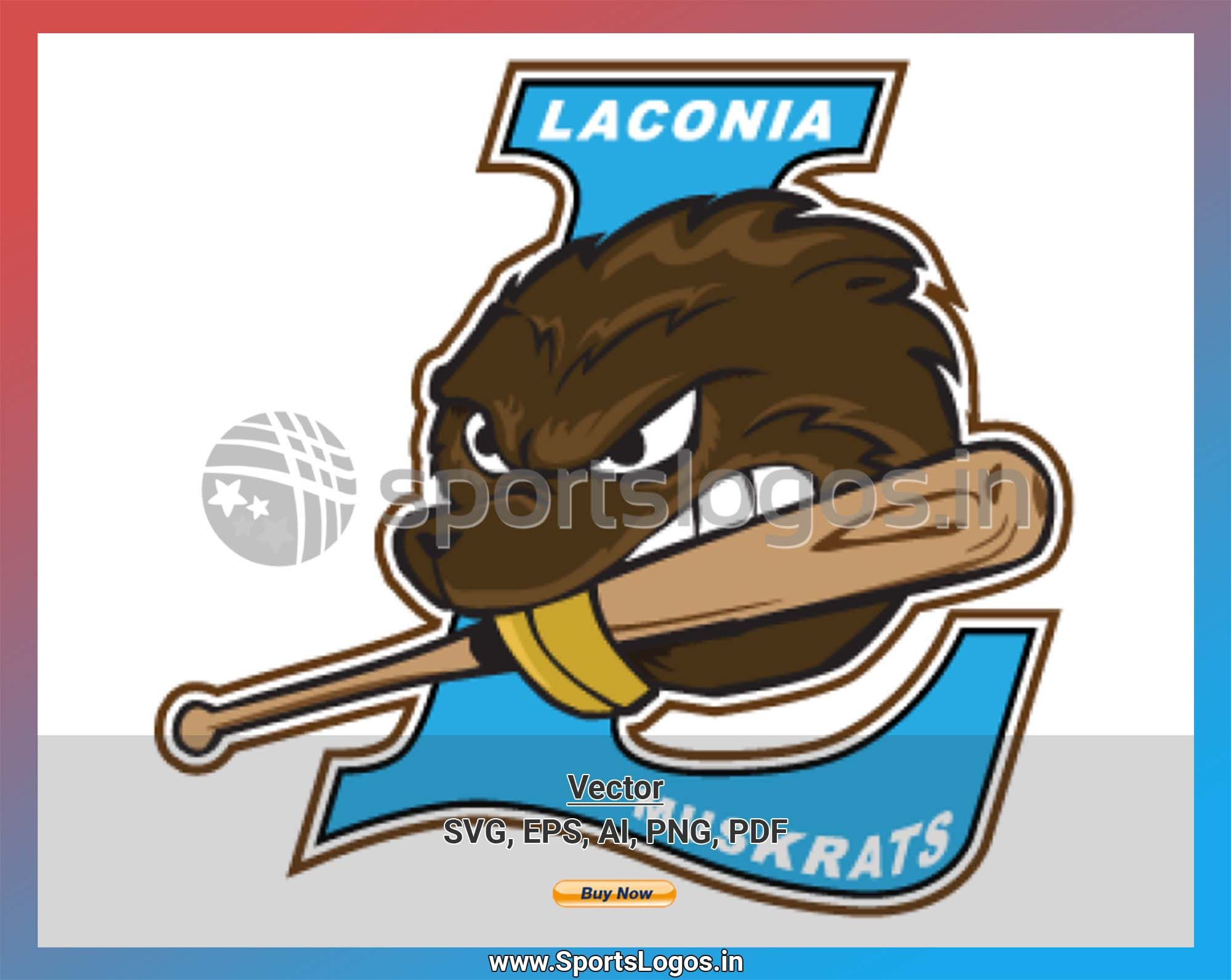 Laconia Muskrats Baseball Sports Vector Svg Logo In 5 Formats Spln002259 Sports Logos Embroidery Vector For Nfl Nba Nhl Mlb Milb And More Embroidery Logo Sports Baseball Sports Logo