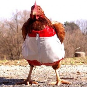 Image result for big mama chicken