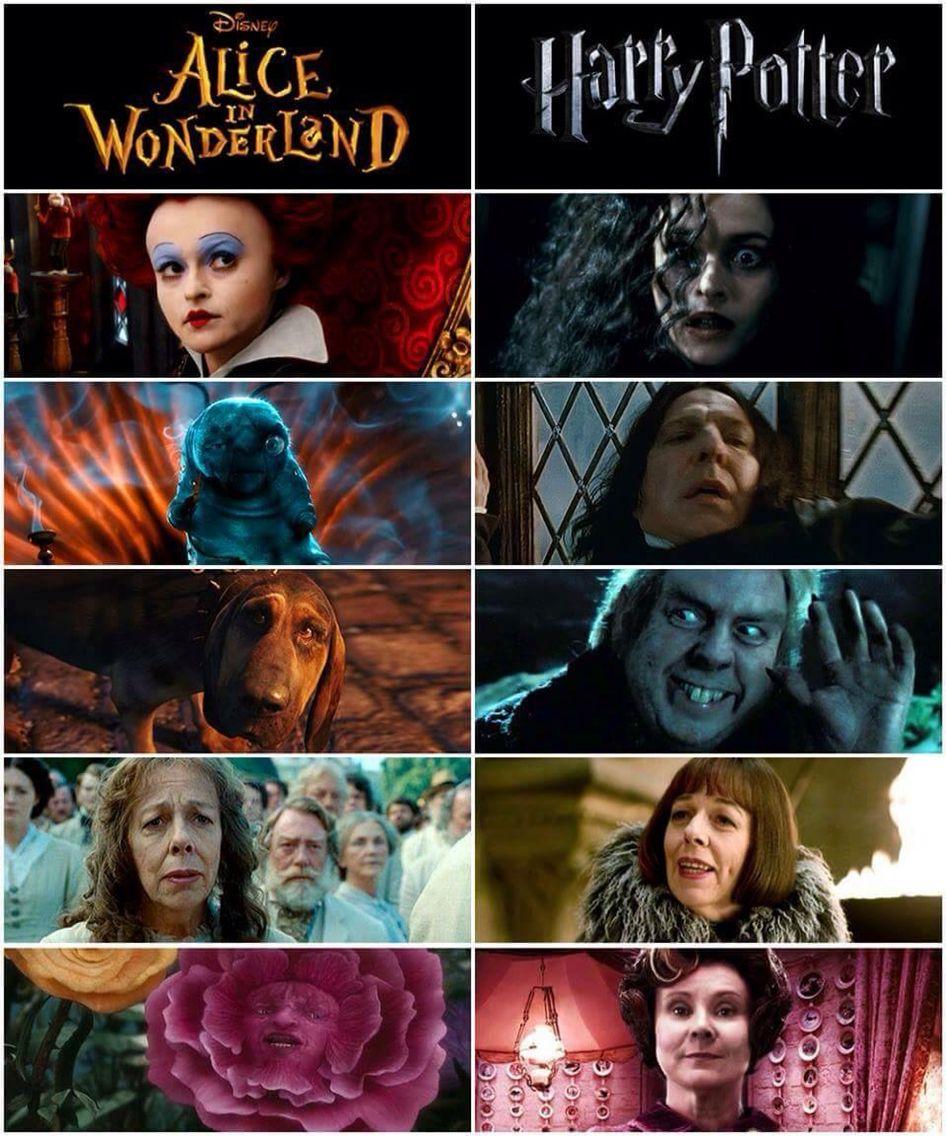 Harry Potter Alice In Wonderland Harry Potter Facts Harry Potter Fandom Harry Potter