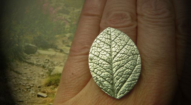 Homemade art clay silver ring by deBATjes .